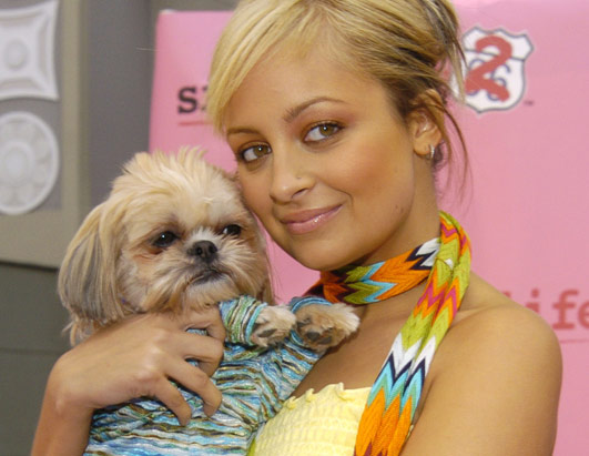 Nicole Ritchie and her blonde shih tzu, dressed in a stripy jumper,