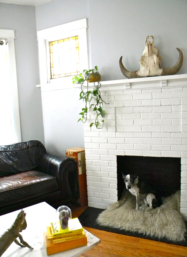 Pet bed fireplace